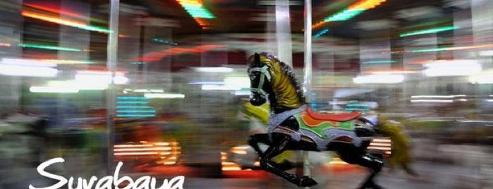 Taman Remaja Surabaya (TRS) is one of Sparkling Surabaya.