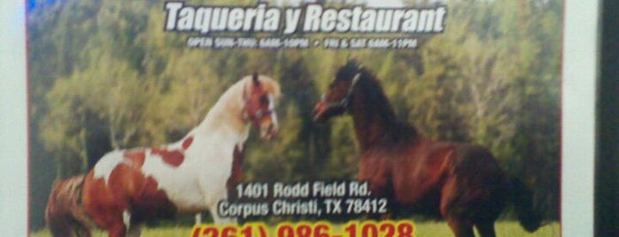 Taqueria El Potro is one of The 15 Best Places for Tacos in Corpus Christi.