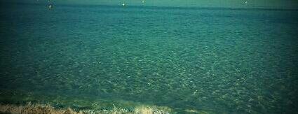 Baia Verde is one of ITALY BEACHES.