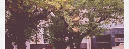 Ochanomizu Park is one of 公園.