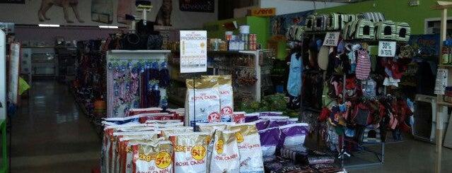 Torremascotas is one of Puntos de distribucion Torrevieja.