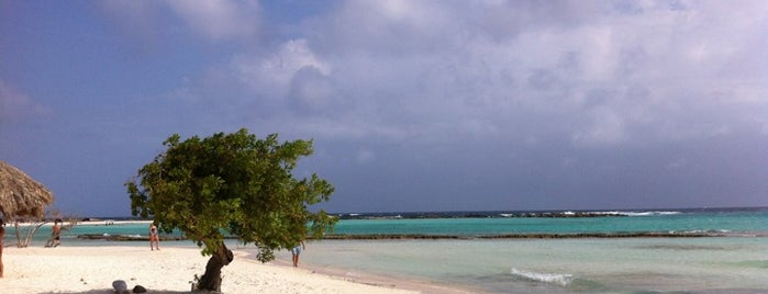 Baby Beach is one of Aruba.