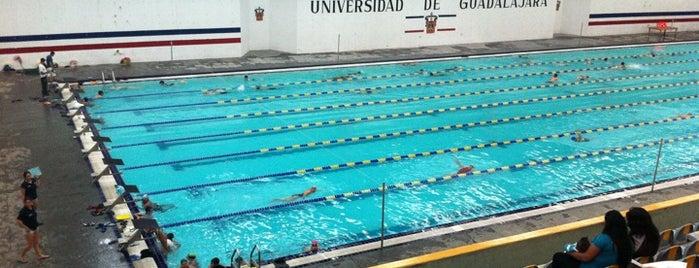 Alberca Olímpica is one of Reto 100 ZMG.