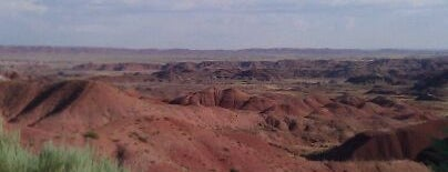 Petrified Forest National Park is one of Visit the National Parks.
