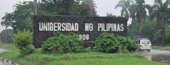 University of the Philippines is one of Academe.