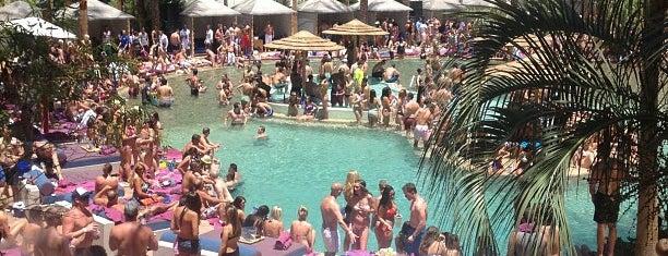 Rehab is one of Best Vegas Pool Parties.