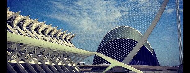 Ciudad de las Artes y las Ciencias is one of valencia.