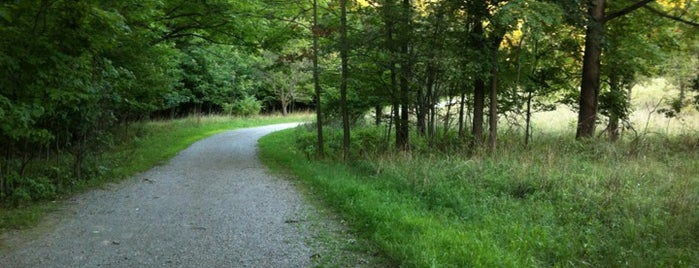 Lion's Club Road Trail is one of Outdoors.