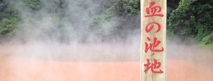 Chinoike-Jigoku is one of 温泉.