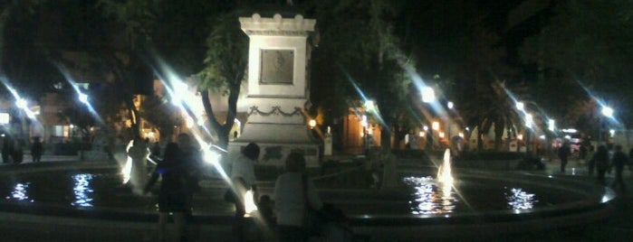 Plaza 25 de Mayo is one of Paseos.