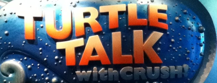 Turtle Talk with Crush is one of Walt Disney World.