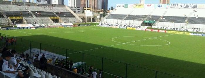 Estádio Maria Lamas Farache is one of conheço.