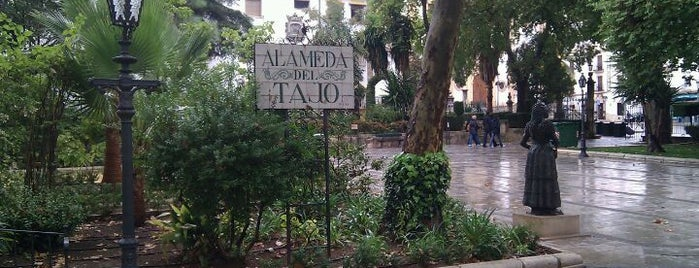 Alameda del Tajo is one of 101 cosas en la Costa del Sol antes de morir.