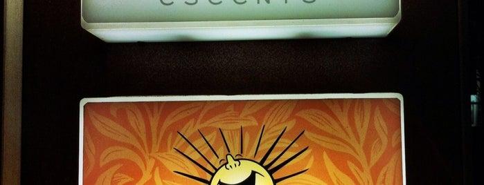 日光大道新生廚坊 Sonnentor Cafe is one of Best Café-by咖啡事典.