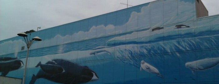 Wyland Whaling Wall is one of Anchorage, AK.
