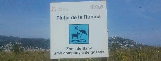 Platja de la Rubina is one of Dog friendly.