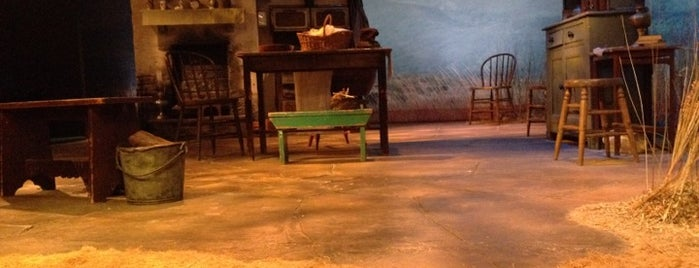 The Irish Repertory Theatre is one of Chelsea Like a Local.