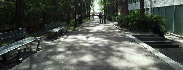 John F. Kennedy Memorial Park is one of Boston.