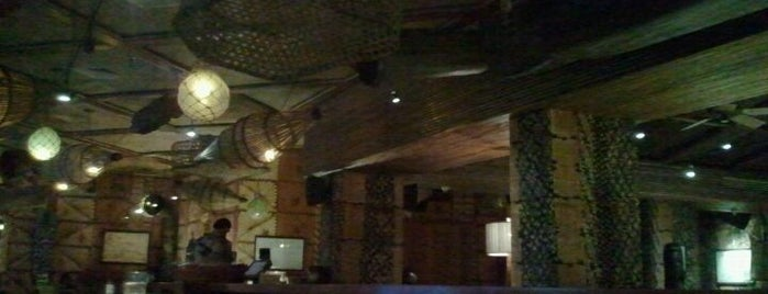 Trader Vics Amman Is One Of Nightlife