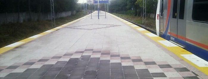 Yeşilyurt Tren İstasyonu is one of Sirkeci - Halkalı Banliyö Tren Hattı.
