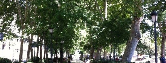 Paseo del Prado is one of Conoce Madrid.