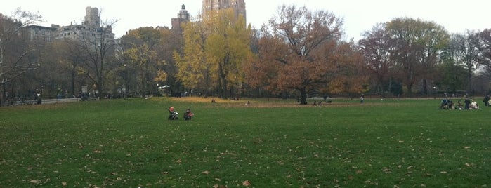 Sheep Meadow is one of NYC to do.