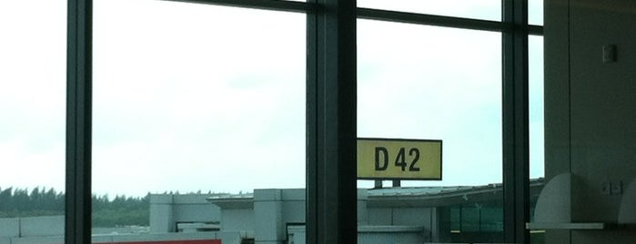 Gate D42 is one of SIN Airport Gates.