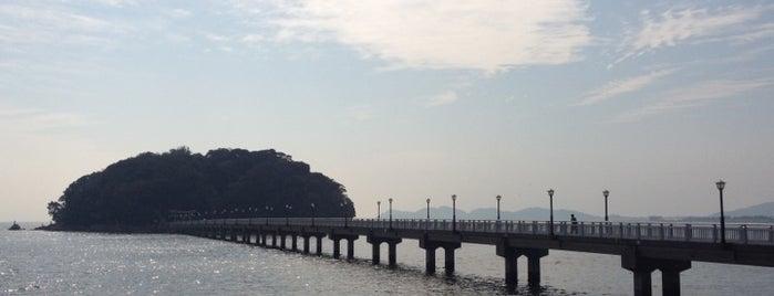 竹島 is one of メンバー.