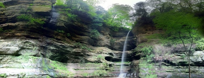 Starved Rock State Park is one of Illinois: State and National Parks.
