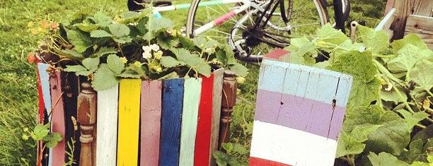Rübezahl Urban Gardening Collective is one of Neukölln.
