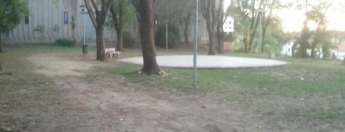 Parco comunale (Campo boario) is one of Tutto Castelleone di Suasa.