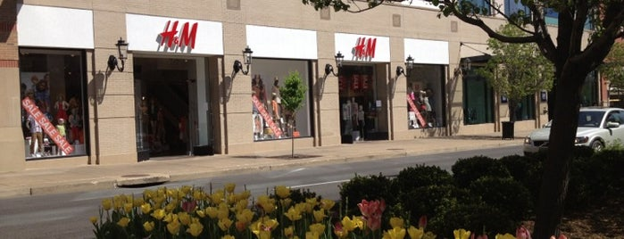 H&M is one of Shopping.