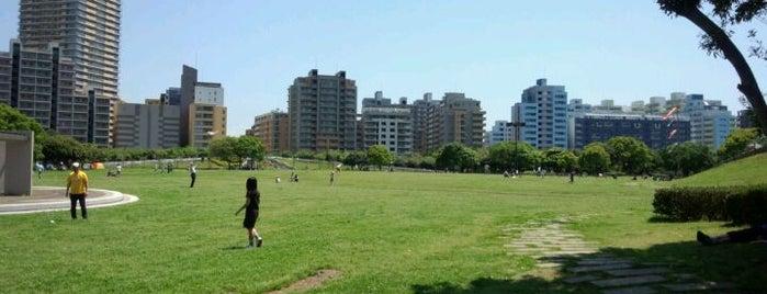 Makuhari Kaihin Park is one of サイクリング.