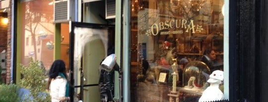 Obscura Antiques and Oddities is one of Best Places In NYC.