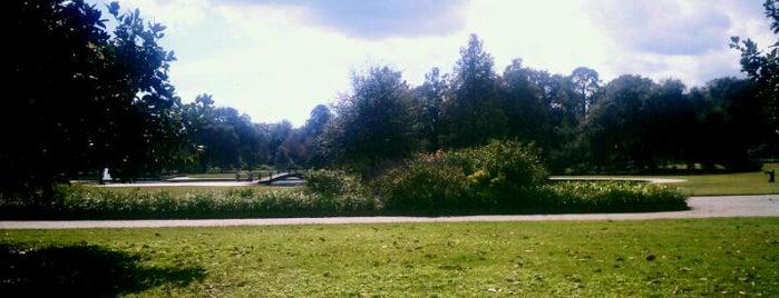 Hampton Park is one of Charleston, SC #visitUS.