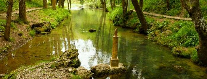 Nacimiento Del Ebro is one of Guía de Cantabria.