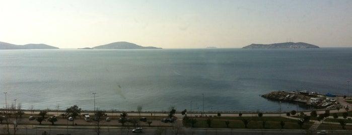 Bostancı - Pendik Sahil Yolu is one of oldugum yerler.