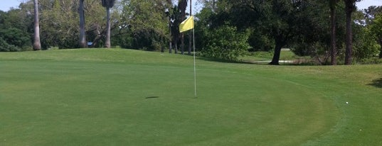 Mangrove Bay Golf Course is one of Top 10 Golf Courses in Tampa Bay.
