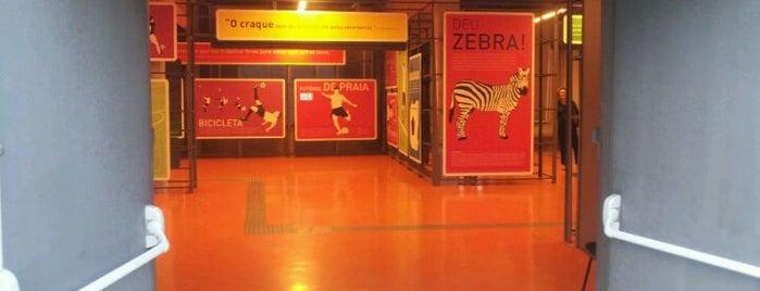 Museu do Futebol is one of Museus de São Paulo.
