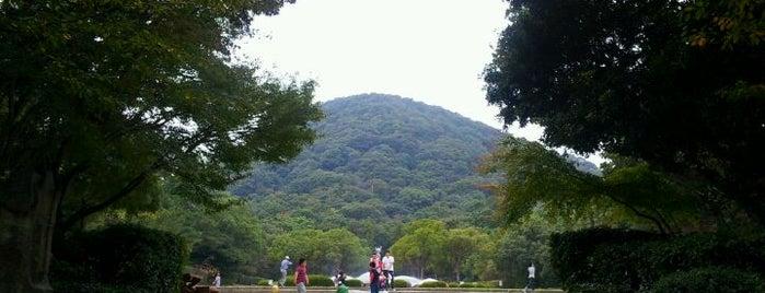 甲山森林公園 is one of 日本の都市公園100選.