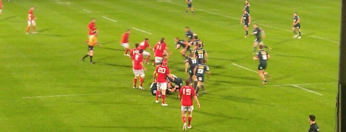 Musgrave Park is one of UK & Ireland Pro Rugby Grounds.