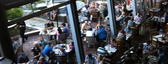 Stone Brewing World Bistro & Gardens is one of Local breweries.