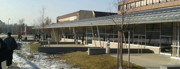 Otto-Friedrich-Universität Bamberg Fakultät Sozial- und Wirtschaftswissenschaften is one of Bamberg #4sqCities.