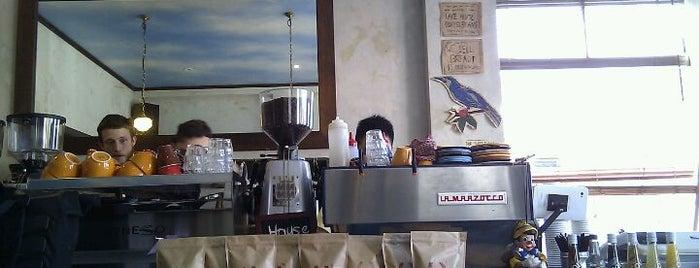 Trafalgar St Espresso is one of Newtown + surroundings.