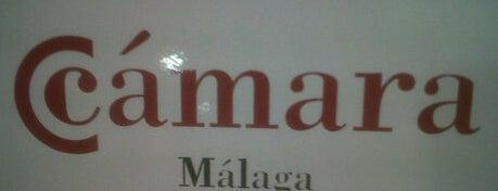 Cámara de Comercio de Málaga is one of Colectivos profesionales de Málaga y provincia.