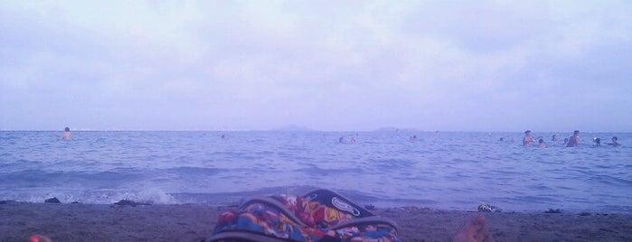 Playa de Manzanares is one of Playas.