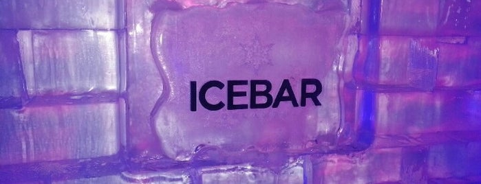 ICEBAR Orlando is one of Dining in Orlando, Florida.