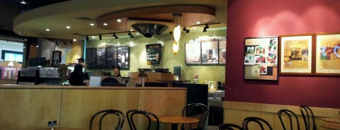 Coffee spots Doha