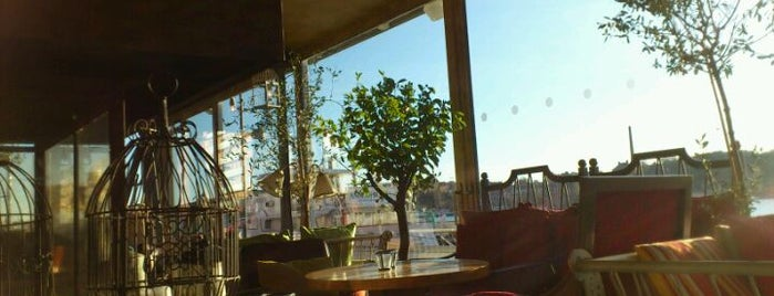 Orangeriet is one of Favorite Places.