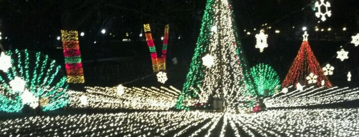 Zoo Lights is one of Chicago.